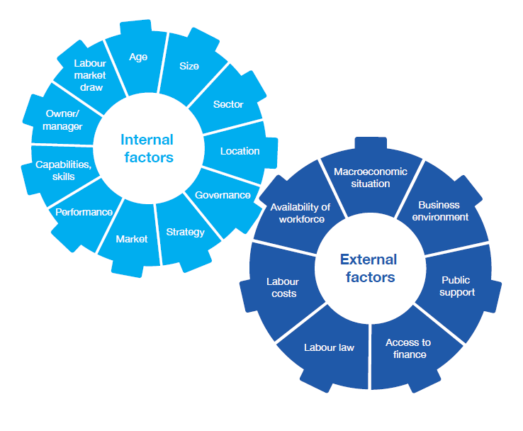 Diagram identifying internal and external factors that influence job creation in SMEs