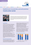 Establishment characteristics and work practices: Construction sector