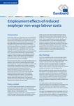 Efectele asupra ocupării forței de muncă ale reducerii costurilor nesalariale ale forței de muncă suportate de angajator