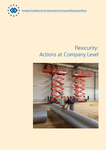 Flexicurity: Actions at company level