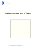 Tackling undeclared work in Turkey