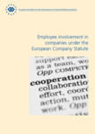 Employee involvement in companies under the European Company Statute