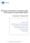Employee involvement in companies under the European Company Statute (ECS): Fresenius SE