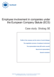 Employee involvement in companies under the European Company Statute (ECS): Strabag SE