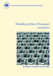 Flexibility profiles of European companies