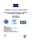 Investing in the future of jobs and skills: Other services sector - Sector report