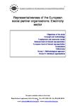 Representativeness of the European social partner organisations: Electricity sector