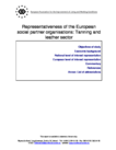 Representativeness of the European social partner organisations: Tanning and leather sector