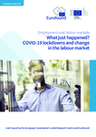 What just happened? COVID-19 lockdowns and change in the labour market