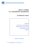 Labour mobility in a transatlantic perspective - Conference report
