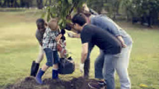 Shutterstock image of mixed group planting a tree in the local community